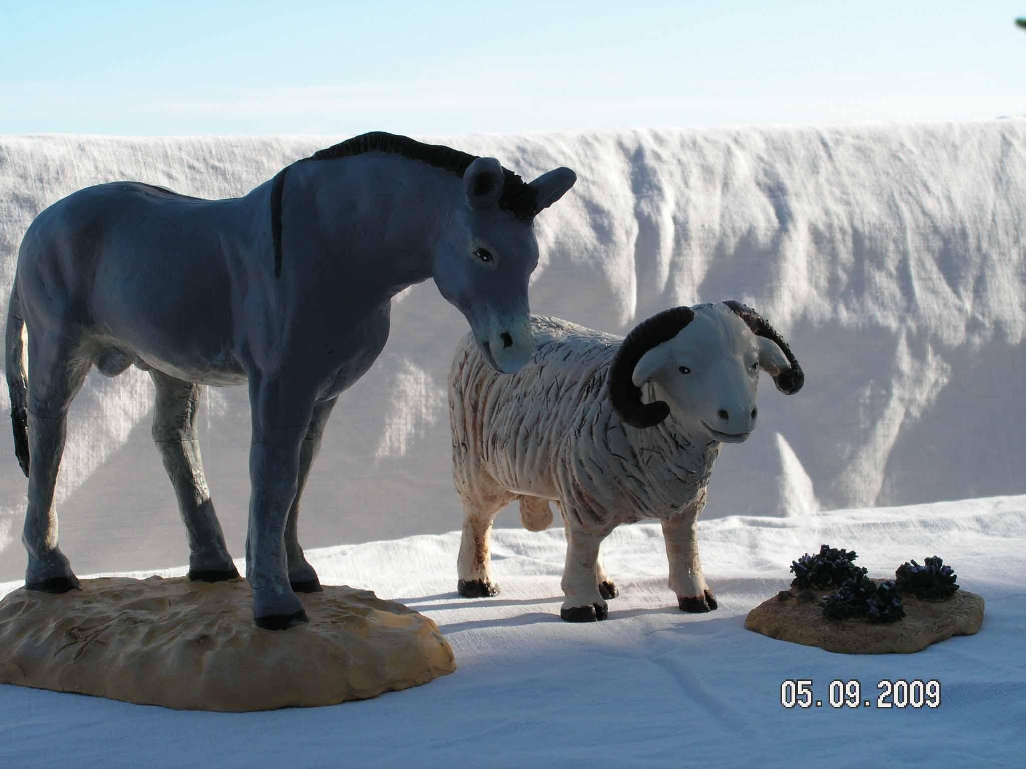 âne et mouton debouts